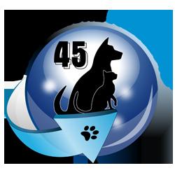 Freccia45_250 px